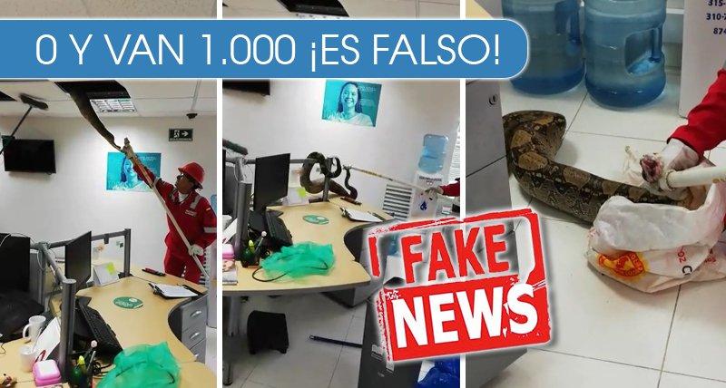 El video de la culebra en el techo NO ocurrió en Cali - Fake News